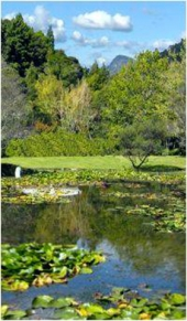 Rapaura Water gardens