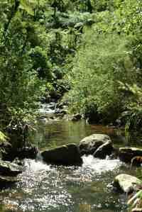 Lot 8 - view upstream